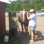 milking-help